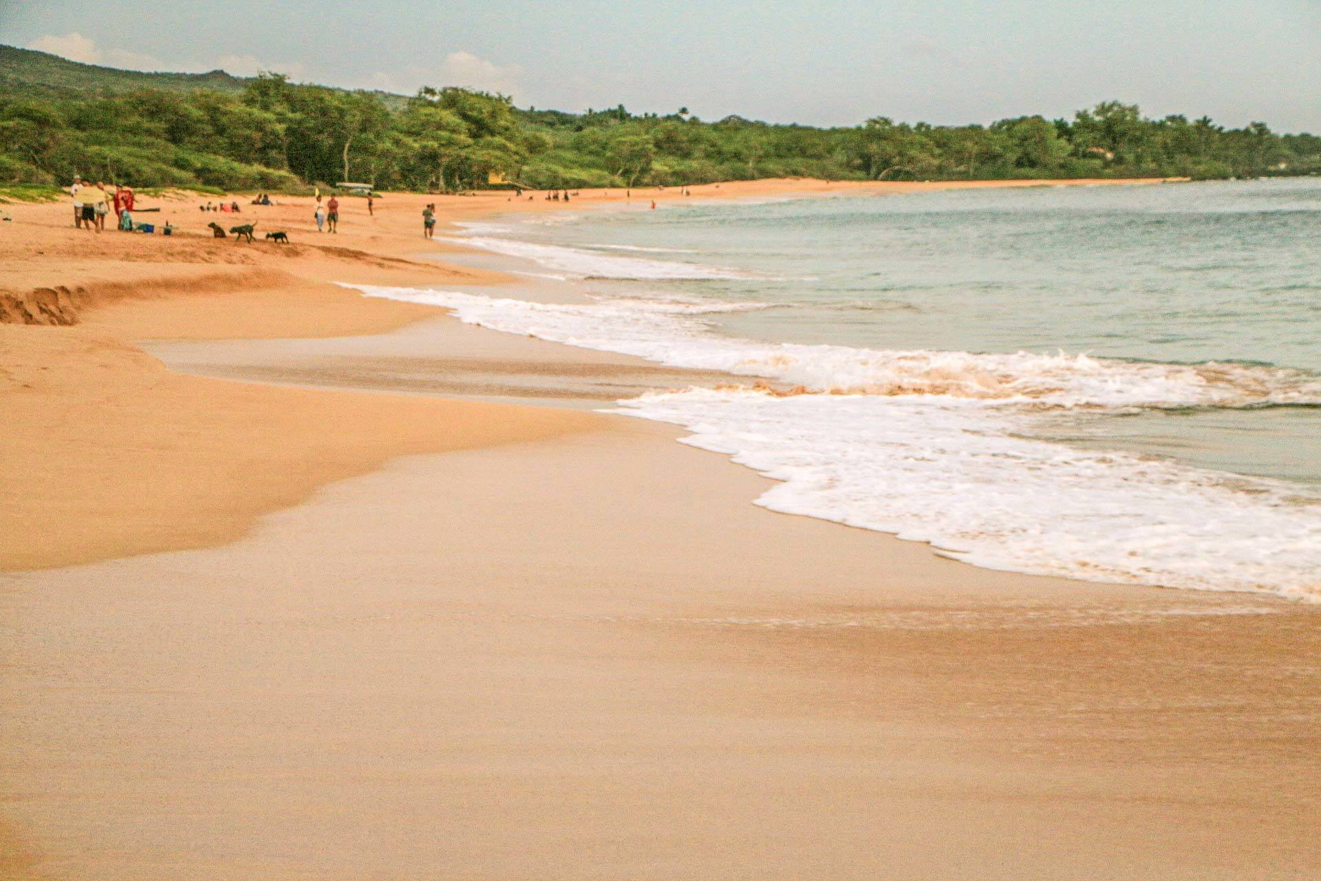 big beach makena maui