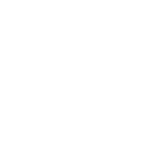 logosection1