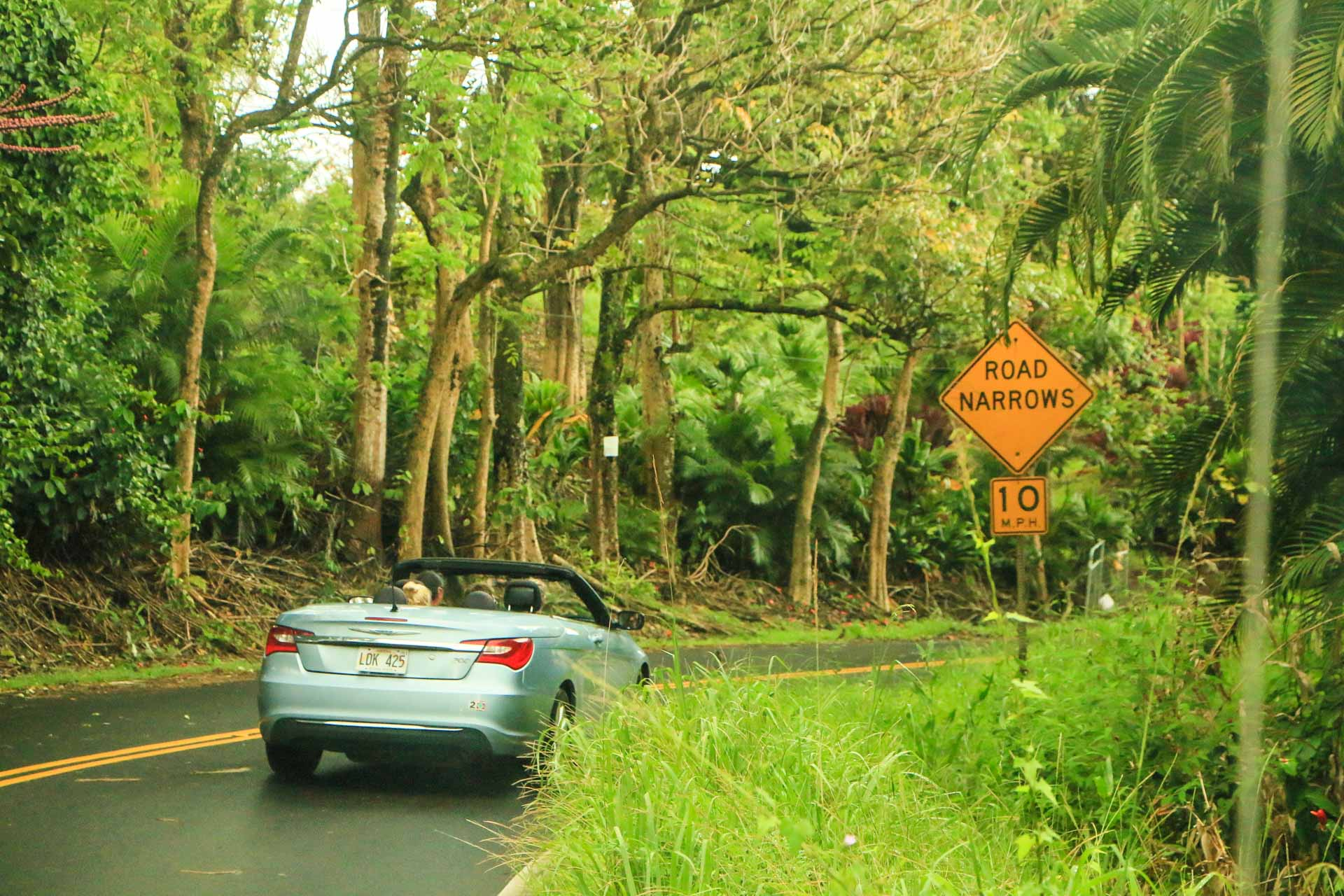 rainforest-convertible-hana