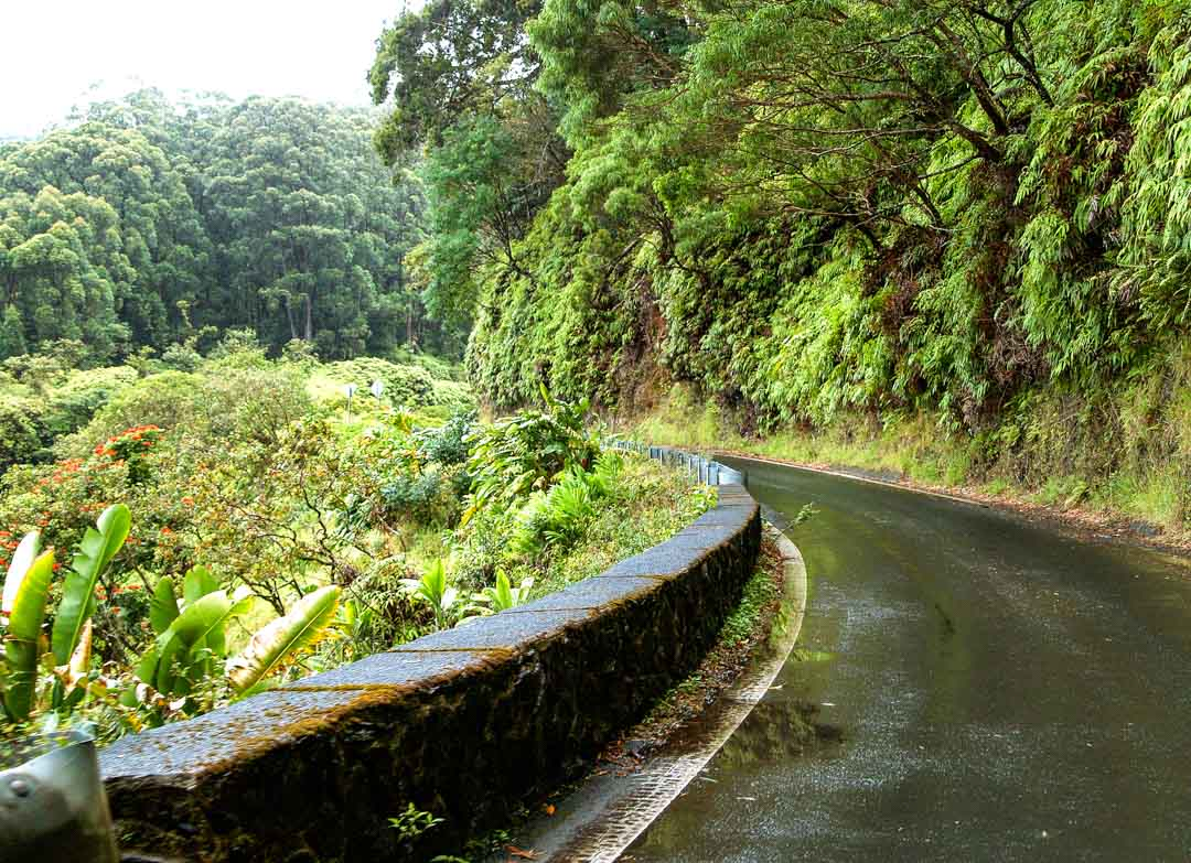 The Road to Hana is the crownjewel of Hawaii driving tours Lush rainforest dramatic and rugged ocean vistas countless waterfalls and pools