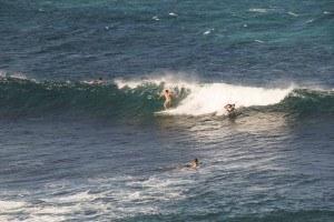 surfing-boogie-board-wave-hookipa